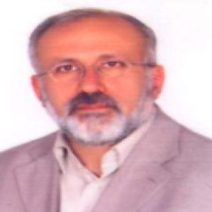 محمدحسین متقی